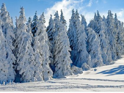 Czeka nas powrót zimy? Będzie ponowne załamanie pogody?